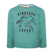 Felpa con stampa dinosauro